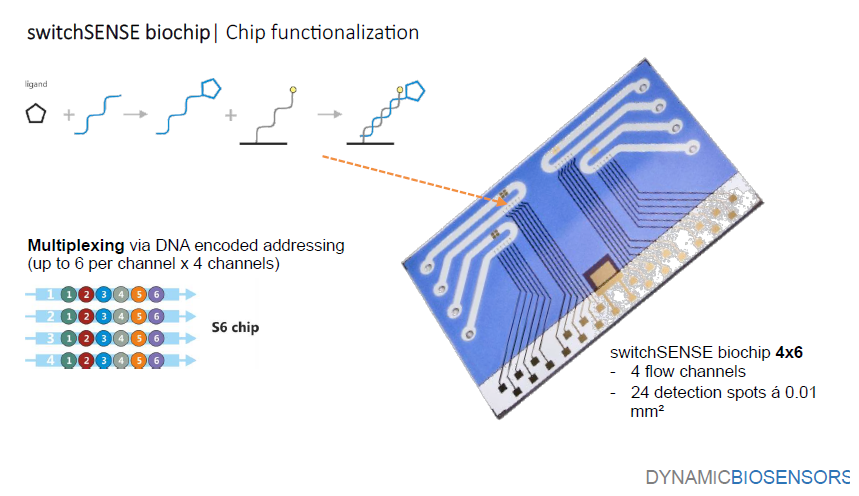 Fonctionnalisation d'une biopuce (Dynamic Biosensors)