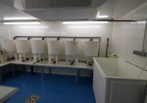 Plateforme PEA - salle d'élevage de proies vivantes